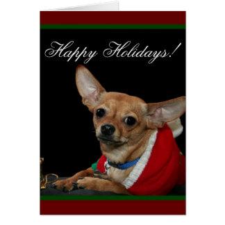 Happy Holidays Chihuahua Greeting Card