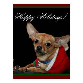 Happy Holidays Chihuahua Postcard