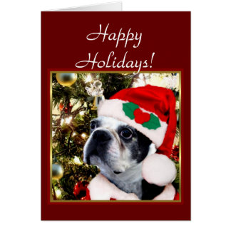 Happy Holidays Christmas Boston terrier Card