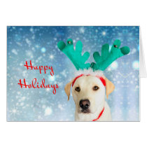 Happy Holidays Cute Dog Reindeer Antlers Festive
