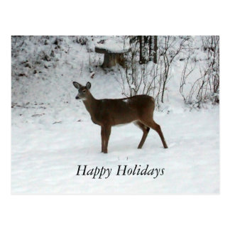 Happy Holidays-Deer Postcard