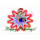 Happy Holidays Fairy Postcard