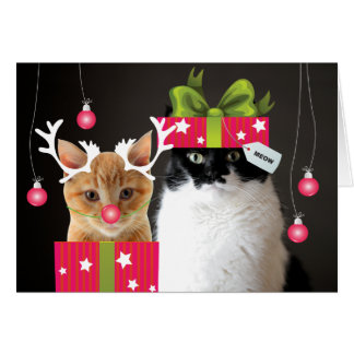 Happy Holidays from Waffles & Katie Greeting Card