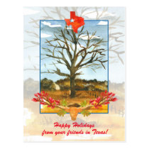Happy Holidays from Your Friends in Texas Postcard