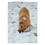 Happy Holidays from Zombie Dog VII Stationery Note Card