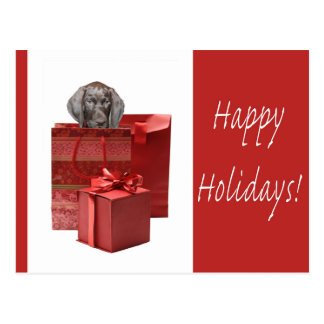 Happy Holidays  german shorthaired pointer Postcard