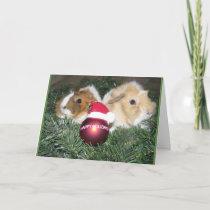 Happy Holidays Guinea Pig Card