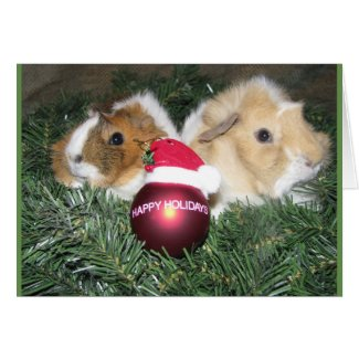 Happy Holidays Guinea Pig Card