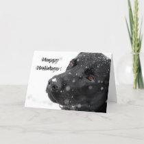 Happy Holidays ! Holiday Card