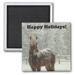 Happy Holidays Icelandic Horse Photo 2 Inch Square Magnet