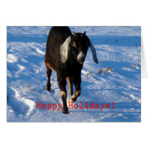 Happy Holidays Nubian Goat Card