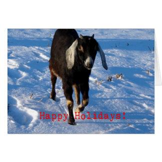 Happy Holidays Nubian Goat Card