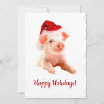 Happy Holidays Pig With Santa Hat Holiday Card