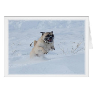 Happy Holidays Pug Playing in the Snow Christmas Card