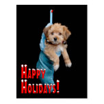 Happy Holidays Puppy Post Card