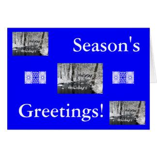 Happy Holidays/Season's Greetings! Card