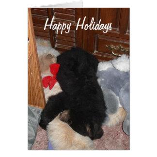 Happy Holidays - Shenandoah Bright Note Card