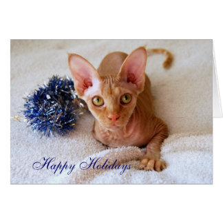 Happy Holidays Sphinx Cat With Blue Tinsel Card