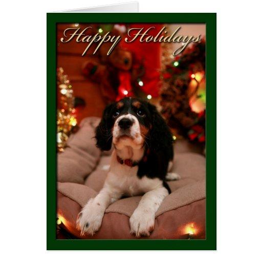 Happy Holidays, springer spaniel Greeting Card