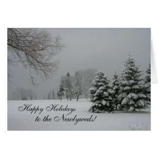 Happy Holidays to the Newlyweds-Winter snow-scene Card