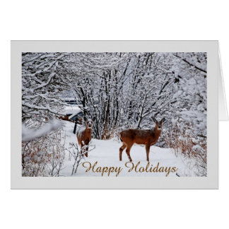 Whitetail Deer Christmas Cards - Invitations, Greeting & Photo ...