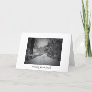 Happy Holidays - Winter Wonderland - Central Park card