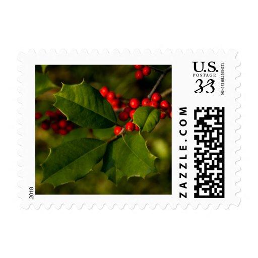 Happy Hollydays! Postage Stamp