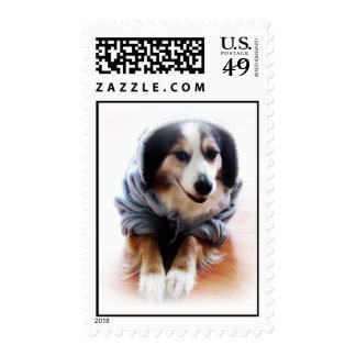 Happy Hoodie Dog Postage Stamp
