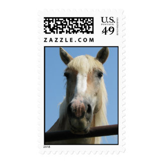 happy horse postage stamp