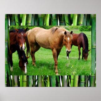 HAPPY HORSES POSTER