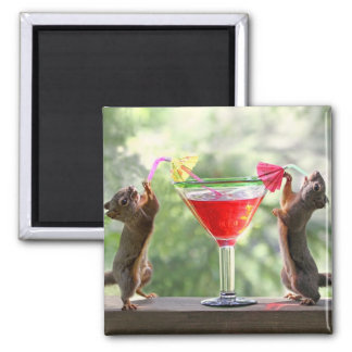 Happy Hour Squirrels 2 Inch Square Magnet