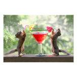 Happy Hour Squirrels Photographic Print