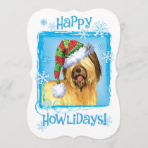 Happy Howlidays Briard Holiday Card