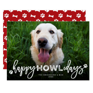 Happy Howlidays Brush Dog Lover Holiday Photo Card