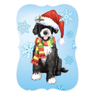 Happy Howlidays Portuguese Water Dog Card