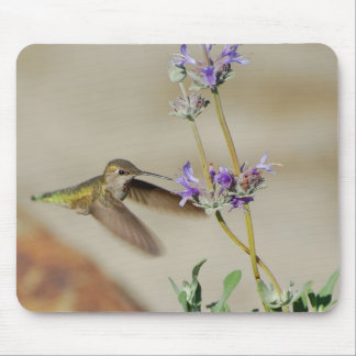 Happy Hummer Mousepads