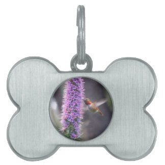 Happy hummingbird pet tag