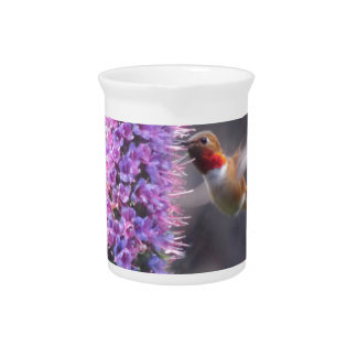 Happy hummingbird pitcher