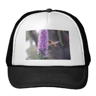 Happy hummingbird trucker hat