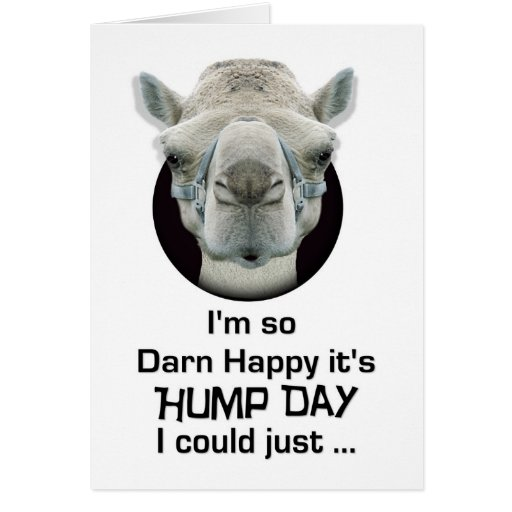 Happy Hump Day Funny Camel Spit Greeting Card  Zazzle