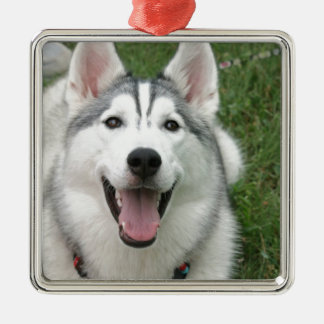Happy Husky Metal Ornament