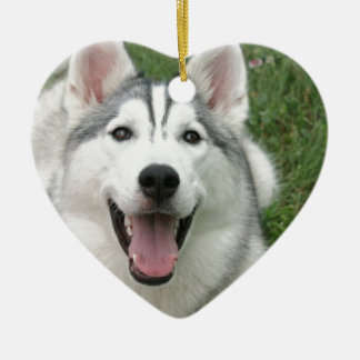 Happy Husky Christmas Ornaments