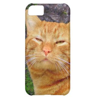 Happy Kitty Kat! iPhone 5C Covers