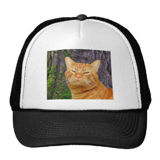 Happy Kitty Kat! Trucker Hat