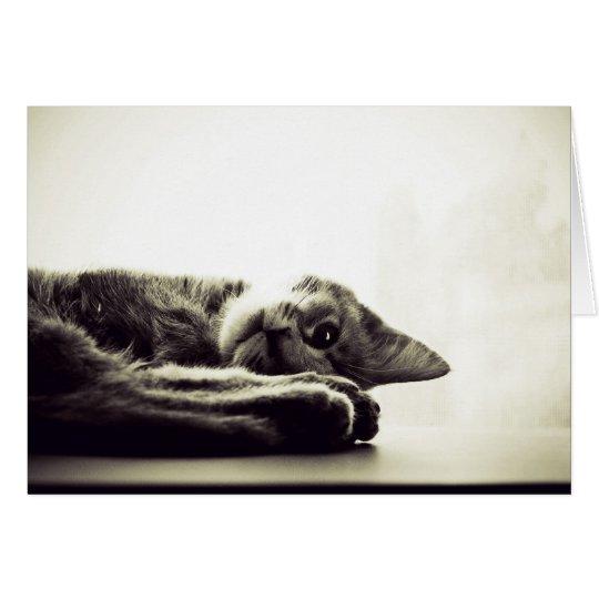 Happy Kitty, Sleepy Kitty Card