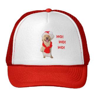 Happy Lab Christmas Hat