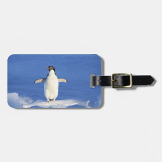 Happy Little Penguin Luggage Tag