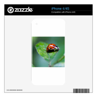 happy lonely lady bug decals for the iPhone 4