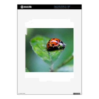 happy lonely lady bug iPad 2 skins