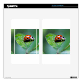 happy lonely lady bug skin for kindle fire